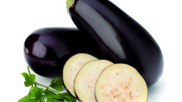 eggplant1281